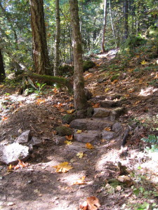 Path to Kuti One